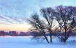 Les bobos de l'hiver