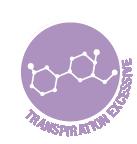 Hyperhidrose (transpiration excessive)
