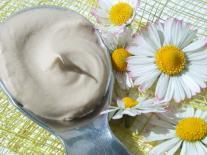 Crème visage jeunesse au Thé vert et à l'Acide hyaluronique