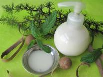 Shampooing pour homme à la Menthe & Aloe Vera tonifiants
