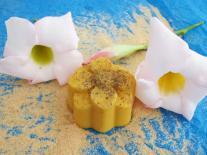 Mon bouquet de fleurs pour le bain : fleur orange