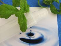 Déodorant spray Menthe & Pierre d'Alun