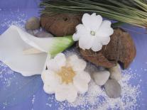 Shampooing solide Fleurs des îles