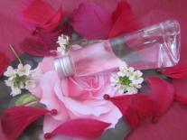 Eau micellaire nettoyante aux fleurs de Rose & Bleuet