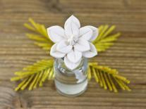 Composition à diffuser Fleur de Mimosa