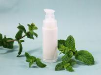 Crème hydratante fraîcheur à la Menthe