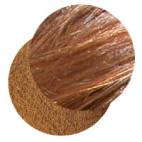 Extrait de plante Cannelle en poudre BIO