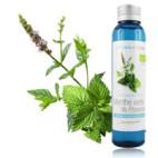 Hydrolat Menthe verte de Provence BIO*